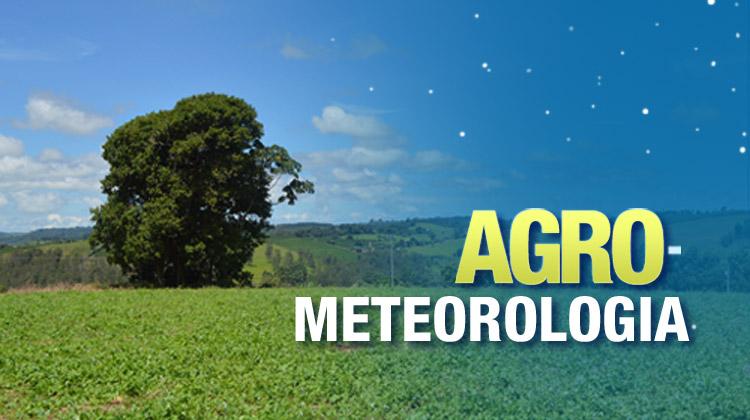 Estação meteorológica online